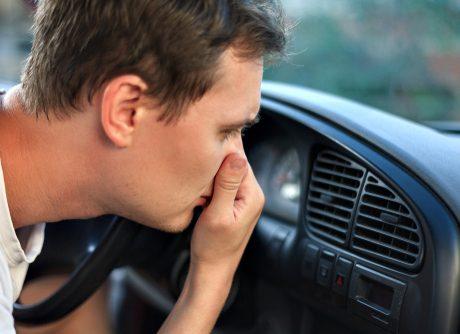 make car smell better